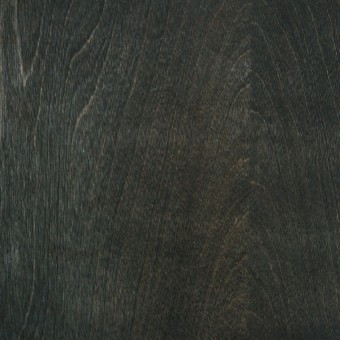 Birch : Blackened / # 23
