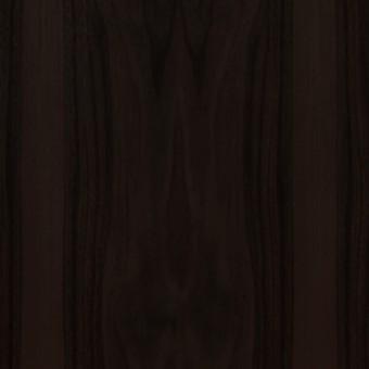 Walnut : Chocolate Walnut / #219