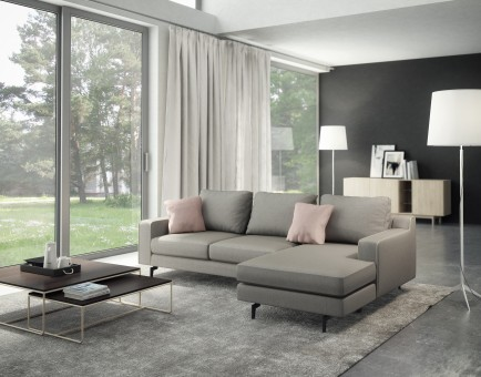 Bi-Sectional sofa