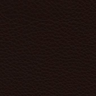 FABRIC Leather : Uno / Espresso
